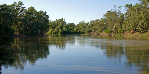 The Murray-Darling River